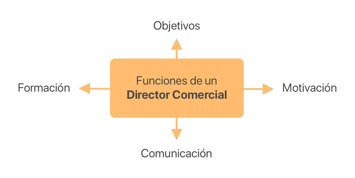 Las 4 funciones de un director comercial a tener en cuenta